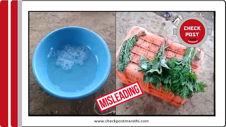 Activator demo viral clip to show fresh vegetables is misleading check post marathi fact