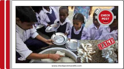 Plastic rice in the mid day meal viral claims are fake checkpost marathi fact